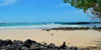 playas / Galápagos